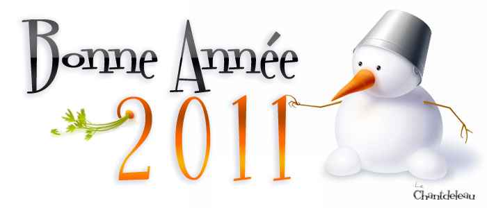Bonne année du Chantdeleau.com